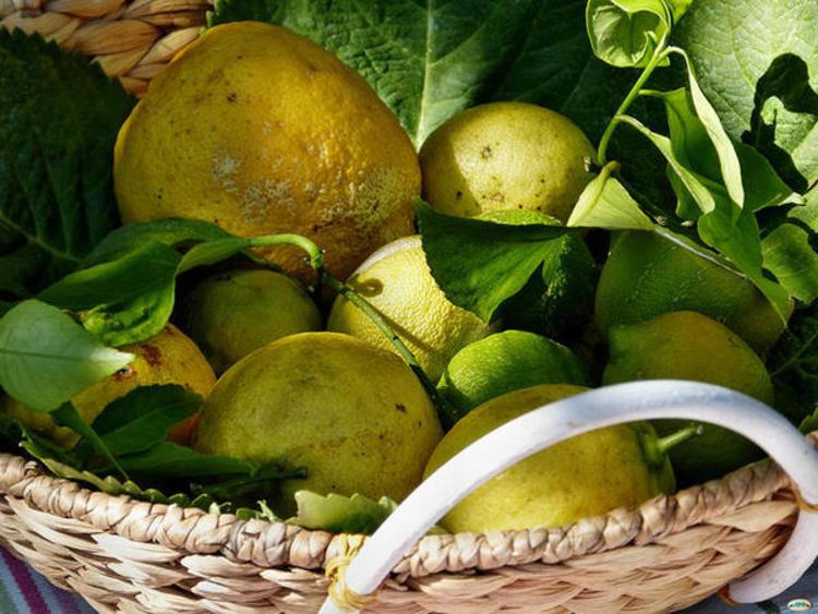 Un panier de citrons